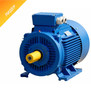 Електродвигун трифазний АИР100L2 5.5 кВт 2870 об/хв 380В, кріплення лапа IM1081, вал 28 мм
