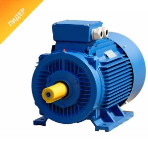 Электродвигатель трехфазный АИР63А4 0.25 кВт 1325 об/мин 380В, крепление лапа IM1081, вал 14 мм